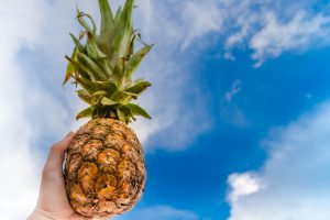 import distribution pineapple